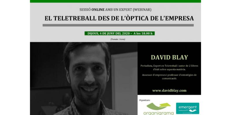 """""""El Teletrabajo desde la óptica de la empresa, sesión formativa online (Webinar) a cargo de David Blay"""
